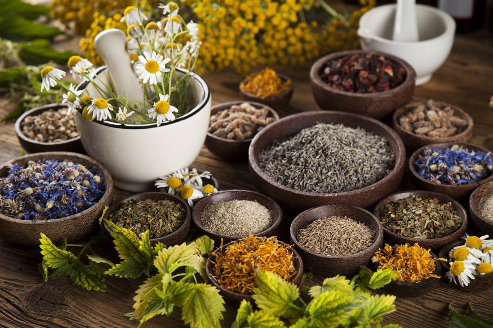 El control del sobrepeso a través de las plantas medicinales